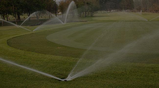 Beverly Hills Irrigation