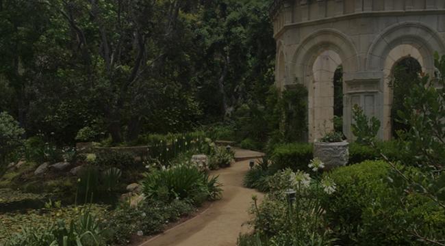 Beverly Hills Garden Design