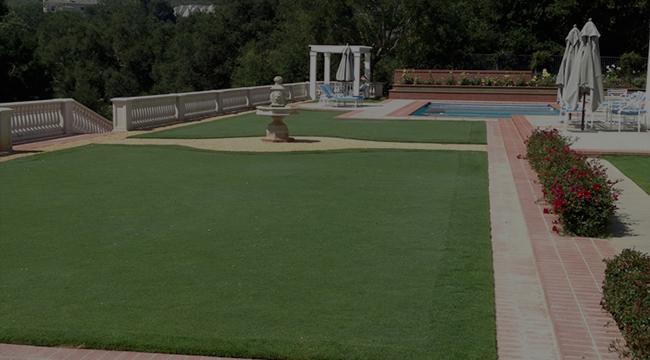 Beverly Hills Landscape Design