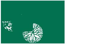 Conejo Complete Landscape Inc. Logo